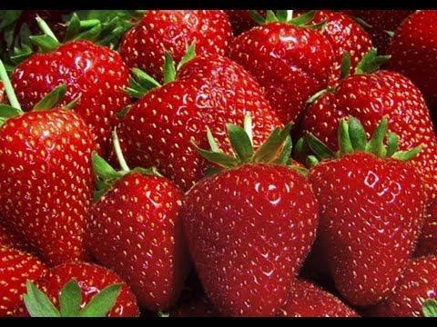 Πως να ψύξετε φράουλες στην κατάψυξη