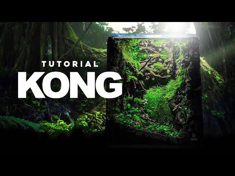 , title : 'KONG - A Mysterious Low-Tech Nano Jungle   Aquascape Tutorial   PlantedTank