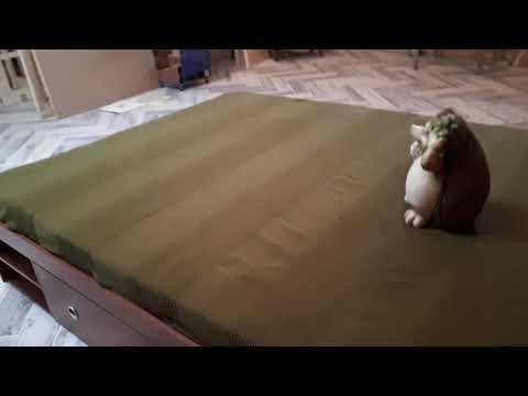 Видео-отзыв о кровати Бэст-Мебель BMS Стефан+ Матрас Бэст-Мебель Комфорт