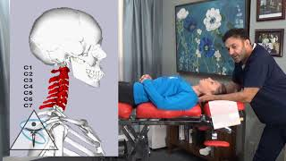 Teaching Chiropractic with Colleagues: Primitive Reflexes, Muscle Testing, & Chiropractic Care