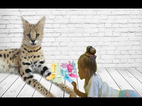Открываем детский игровой набор для маникюра.Салон красоты.Делаю маникюр.Кошка сервал.
