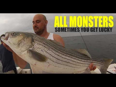 How to Rig and Hook Bait for BIG Striped Bass