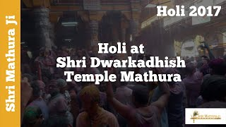 Brij Ki Holi at Shri Dwarkadhish Temple Mathura 2015 Part I