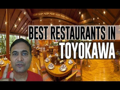 Best Restaurants and Places to Eat in Toyokawa , Japan