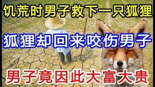 饥荒时男子救下一只狐狸,狐狸却回来咬伤男子,男子竟因此大富大贵!
