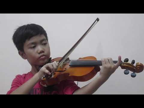 Time to Say Goodbye violin cover