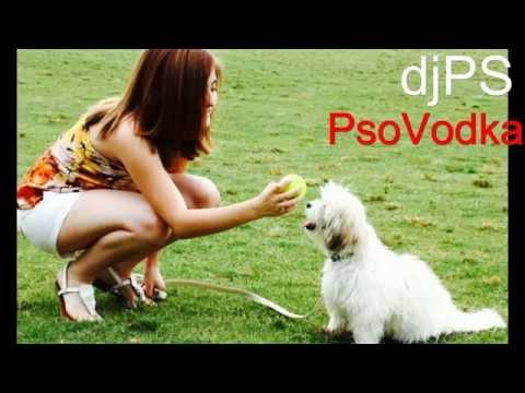 HomeStudioPS - djPS - PsoVodka -EXPERIMENT 2-