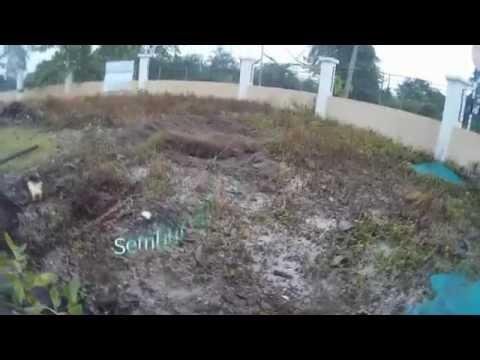 Video Cara Tanam rumput karpet di halaman