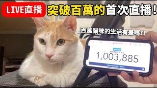 【黃阿瑪的直播】百萬訂閱後的首次直播,百萬貓咪的生活?