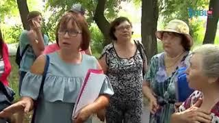 Челябинцы бастуют против вырубки многолетних деревьев