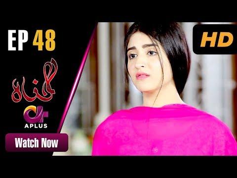 Pakistani Drama   Gunnah - Episode 48   Aplus Dramas   Sara Elahi, Shamoon Abbasi, Asad Malik