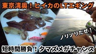 2018年10月ヒイカのライトエギング千葉県堤防で好調!繊細なアタリを見極めろ