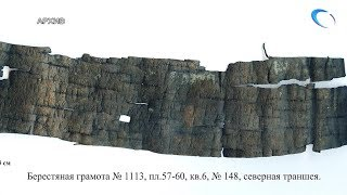 В Великом Новгороде археологи впервые обнаружили берестяную грамоту о «падчерице»
