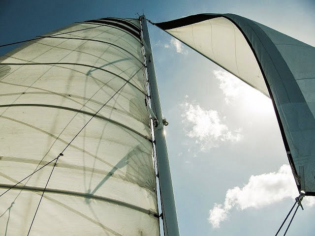 "Seven ""Getting Started"" Mainsail Tips for All Sailing Seasons"
