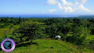 11/14/2018 For Sale 20.5 Acres Superb Quality Farm Land Cabrera Dominican Republic