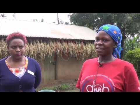Children with Spina bifida face stigmatisation - Social workers