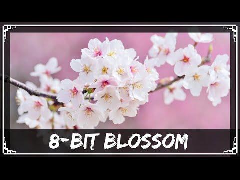 [Undertronic Original] SharaX - 8-Bit Blossom (Cider, Chronos, Zephyr & Seris Vocals)