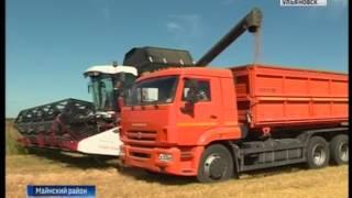 Майнские аграрии приступили к уборке зерновых культур
