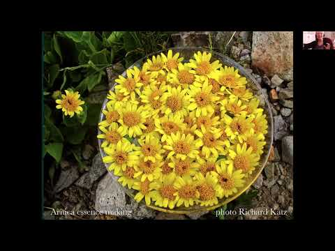 Ruth Toledo Altschuler - Flower Essence Practitioner and Mentor ...