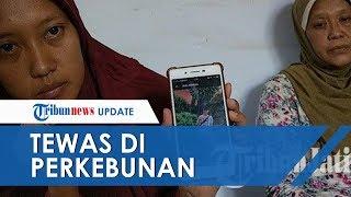 TKI Trenggalek Tewas di Perkebunan Malaysia dengan Luka Sayatan di Leher