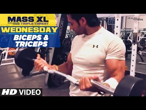 Wednesday : Biceps & Triceps – MASS XL – Muscle Building Program