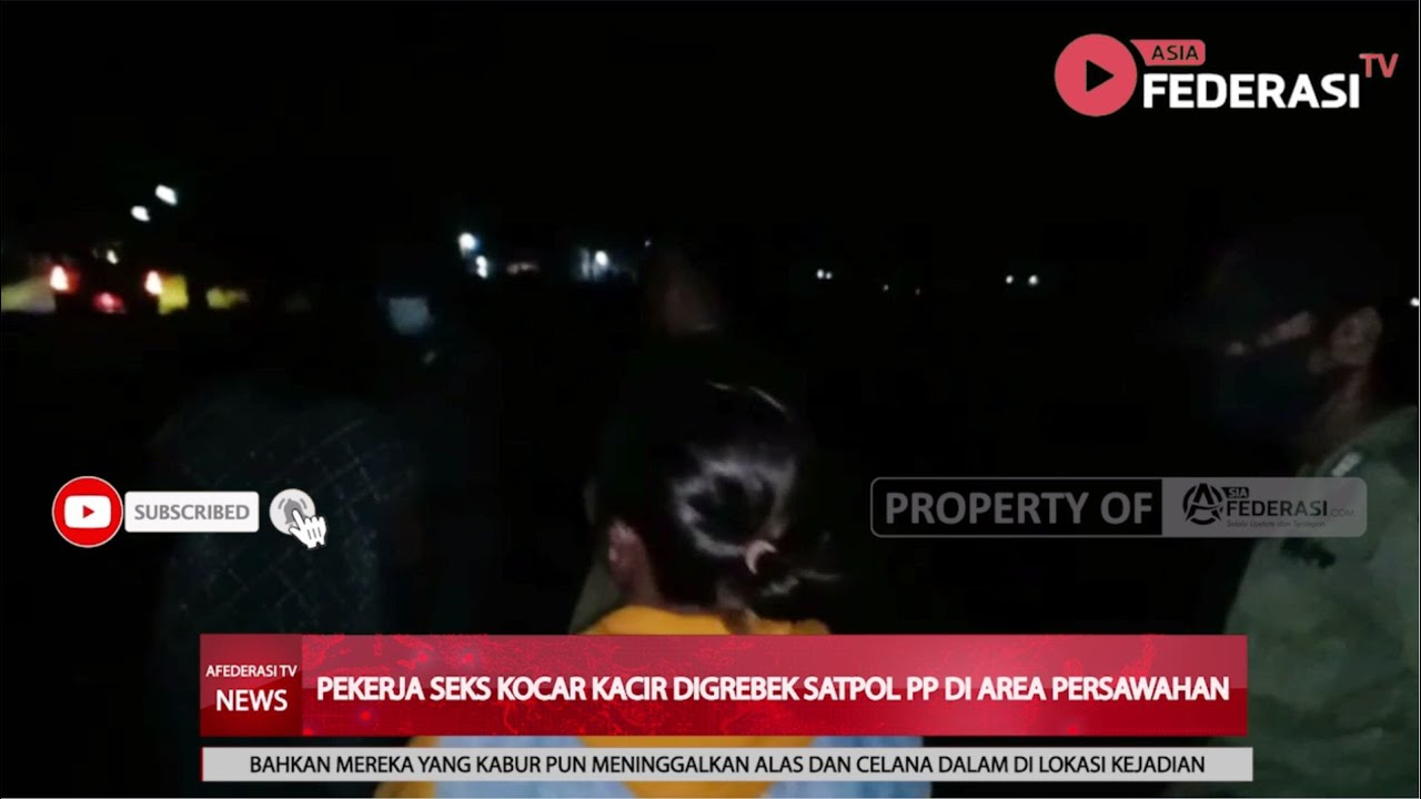 SITUBONDO – PEKERJA SEKS KOCAR KACIR DIGREBEK SATPOL PP DI AREAL PERSAWAHAN