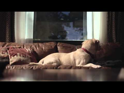 Someone Waits For You At Home, DON'T DRINK & DRIVE | Budweiser Ads