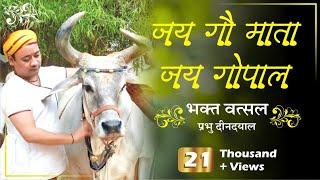 Shri Radha Krishan Ji Maharaj Jai Gomata Jai Gopal Bhajan