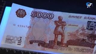 Полицейские задержали в Великом Новгороде мужчину, пытавшегося сбыть фальшивые деньги