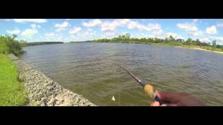 preview picture of video 'WTF? Guelph Conservation Reservoir, Guelph, Ontario'
