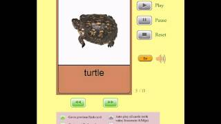 Audio Flashcards for Kids - Animals - Reptiles and Amphibians