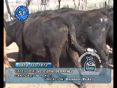 Lote VC CGP - Baradero