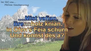 Melissa Naschenweng   Net Mit Mir   Instrumental