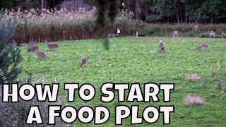 HOW TO START A FOOD PLOT FOR DEER **JEFF BEELER CEO OF ANTLER GROW**