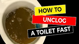 How to Unclog a Toilet Fast 🚽