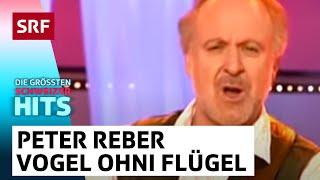 Die Grössten Schweizer Hits   Peter Reber: «E Vogel Ohni Flügel»