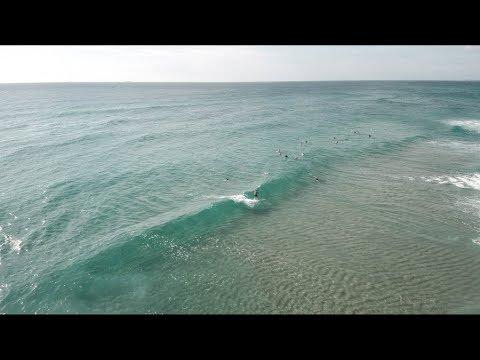 Fun waves and beautiful scenery at Kawana