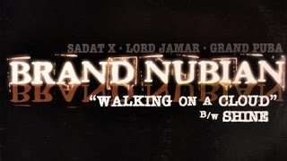 Hip-Hop Vinyl Reviews: Brand Nubian - Walking on a Cloud (Episode 15)