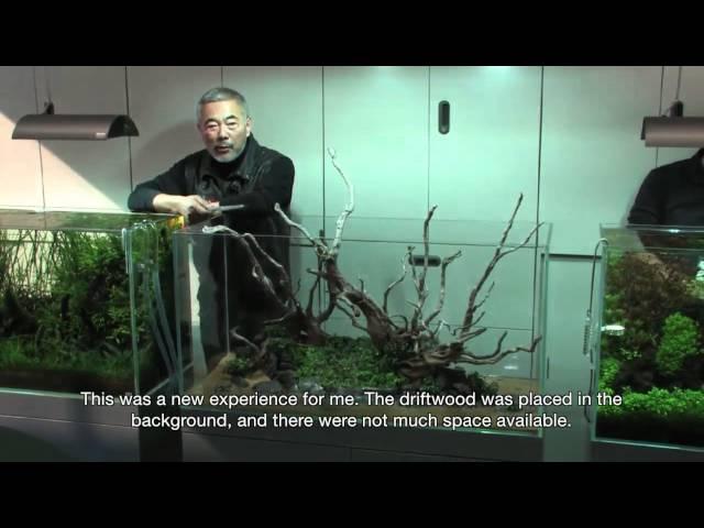 TAKASHI AMANO LAYOUT SEMINAR A 120cm aquarium tank No.5 2012.02.22