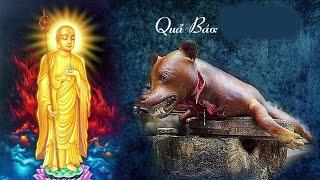 Quả Báo Giết Chó - Đừng Tiếc  Phút Nghe Để Tránh Nhân Quả Báo Ứng - Truyện Phật Giáo Hay Nhất
