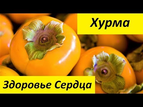 Ассоциация сахарного диабета в россии