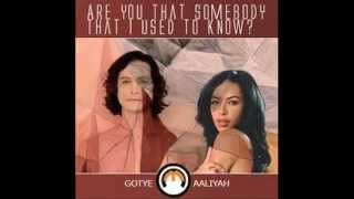 Aaliyah/Gotye- Are You That Somebody That I Used to Know?
