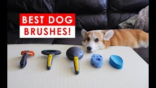 BEST DOG BRUSHES FOR SHEDDING AND HEALTHY FUR HAIR