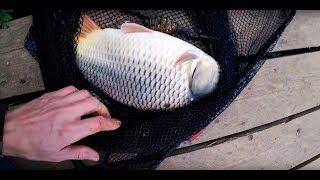 Рыбалка в саньково клинский район
