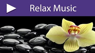 Beautiful Things: 3 HOURS Mindfulness Nature New Age Zen Therapy Music