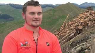 Being a forestry apprentice