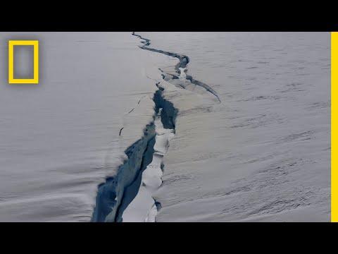 The Antarctic is Splitting in 2