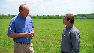Hay Management Practices