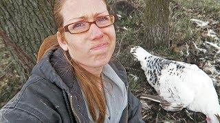 Our turkey died in the WEIRDEST way