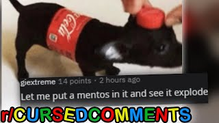 r/CursedComments · put mentos in it
